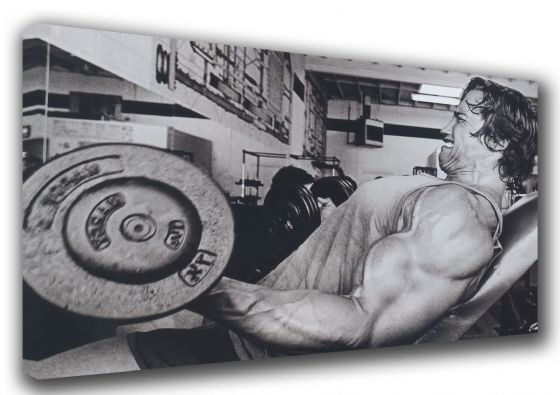 Arnold Schwarzenegger: Bodybuilding Legend. Muscle/Strength Training Black & White Canvas. Sizes: A3/A2/A1
